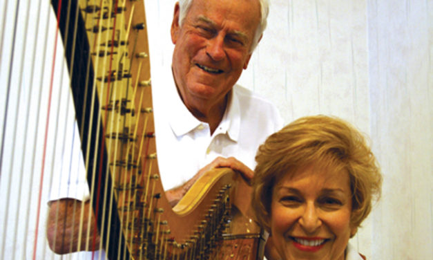 How Many Towns Have a Harp Store?