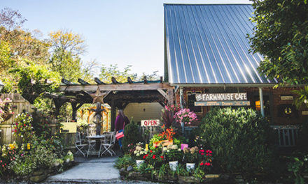 Farmhouse Cafe and Tea Room: It's Tricky to Find but Worth the Drive