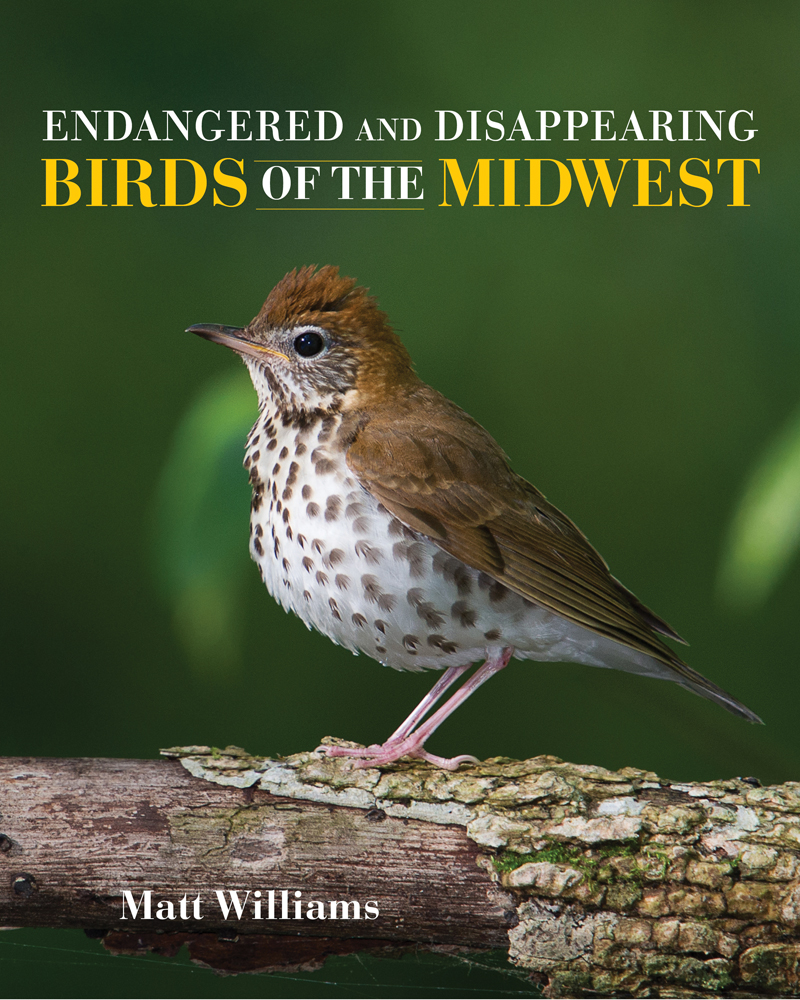 IU Press book Endangered and Disappearing Birds of the Midwest.