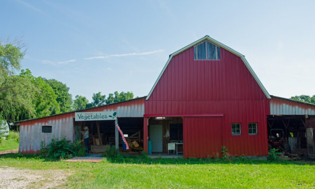 Local Farm Stand Offers Food on Honor System